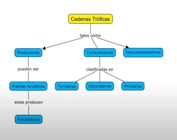 ejemplos de mapas conceptuales en cmaptools en línea gratis sin descargar